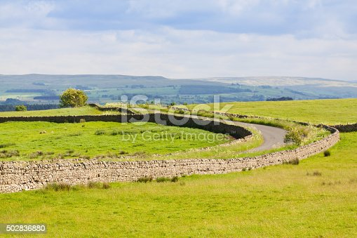 Landscape with Rural Road, Cumbria {Hadrian Wall area}, United Kingdom. Meadow, trees, stone wall and green grass are in foreground. Blue sky with clouds is in background. HDR photorealistic image.