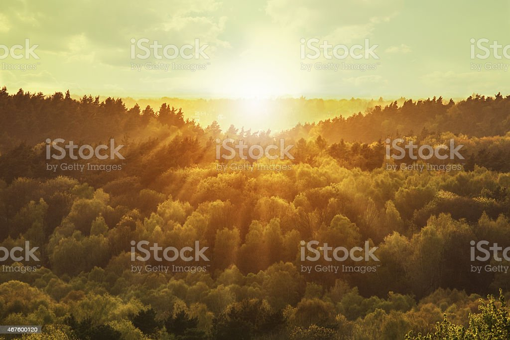 Landscape with sun rays stock photo