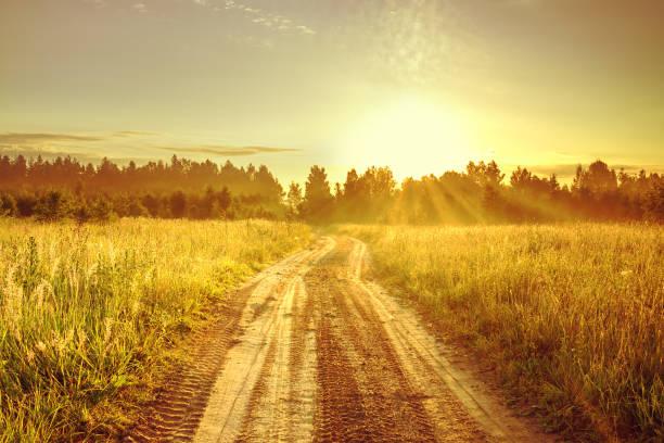 風景與日出和路 - 懷舊色調 個照片及圖片檔