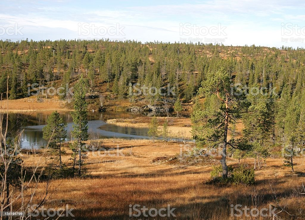 Landscape with tarn royalty-free stock photo