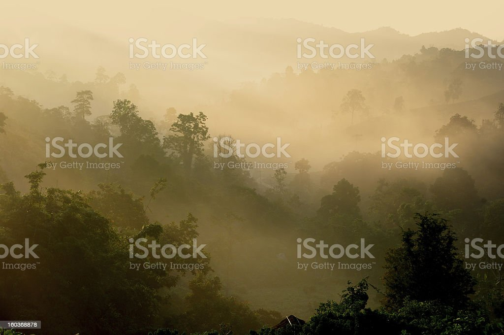 Landscape with the mist in mountain royalty-free stock photo