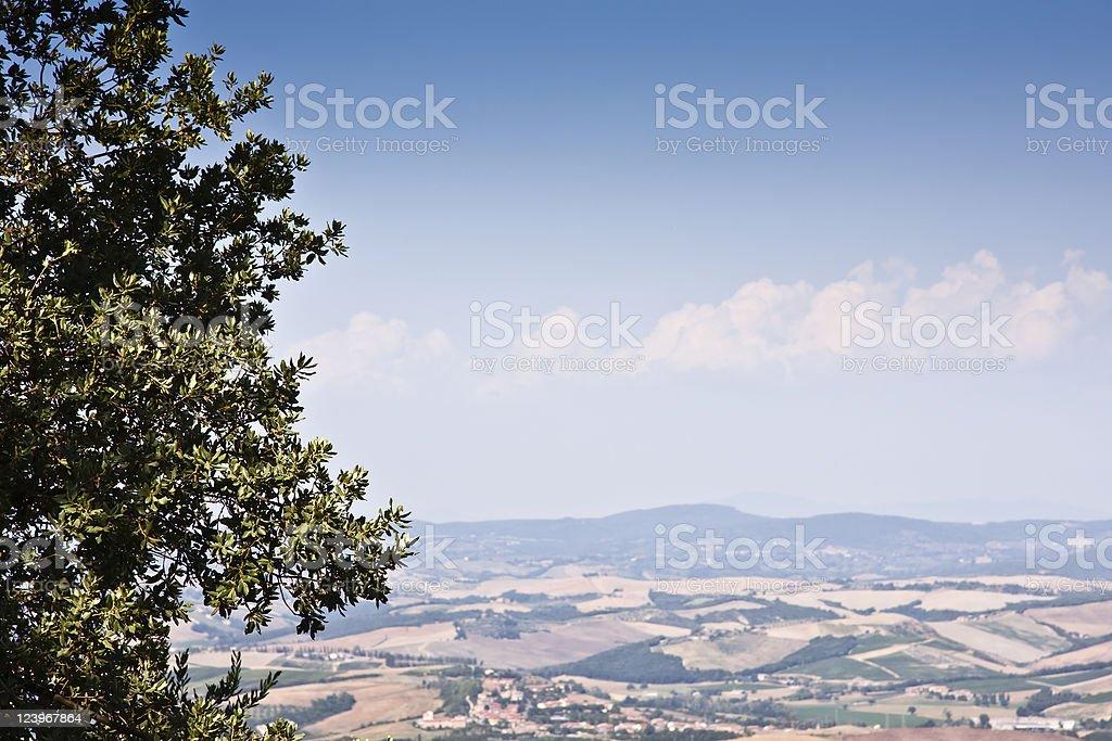 Landscape with Tree, Chianti Region in Tuscany royalty-free stock photo