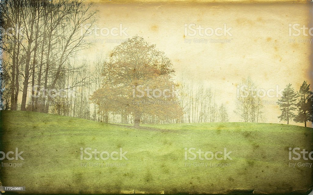 Landscape with tree in fall. royalty-free stock photo
