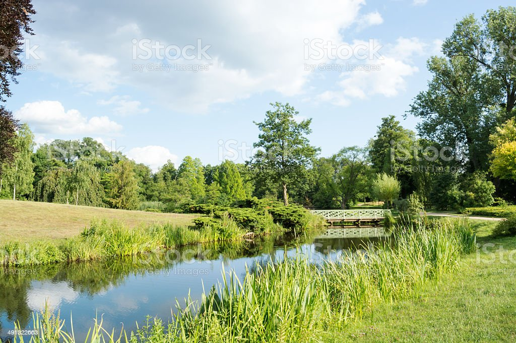Landscape with trees and grass, reflecting in the water, Potsdam stock photo