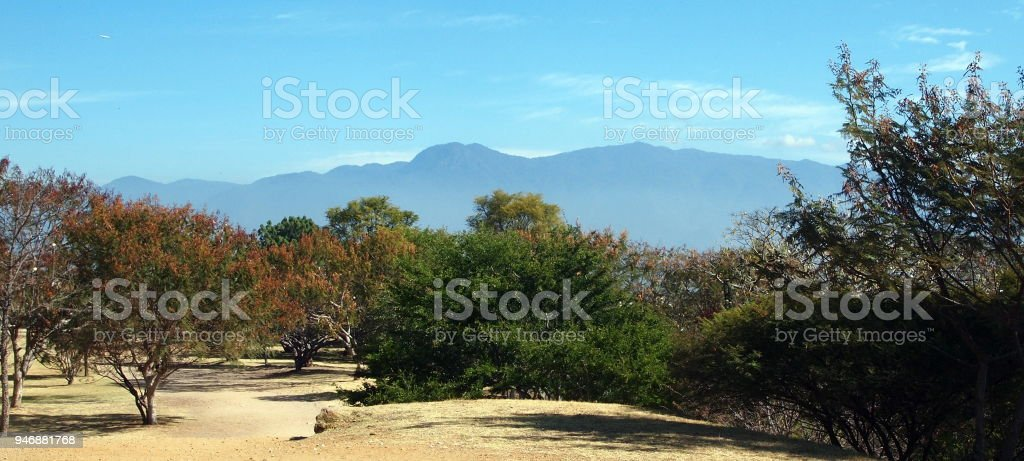 Landscape with trees and hills near Oaxaca stock photo