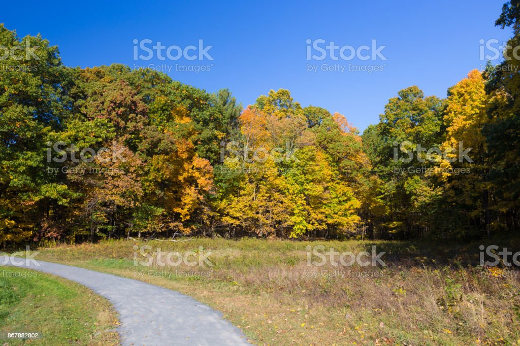 Landscape with Trees in Autumn Colors (Foliage) and Vivid Blue Sky, Poets' Walk Park, Red Hook, Hudson Valley, New York. stock photo