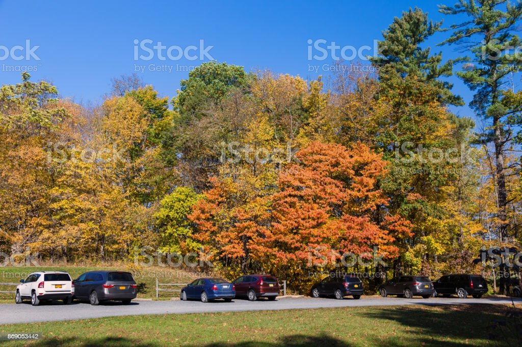 Landscape with Trees in Autumn Colors (Foliage), Parked Cars, Gravel Road and Vivid Blue Sky, Poets' Walk Park, Red Hook, Hudson Valley, New York. stock photo