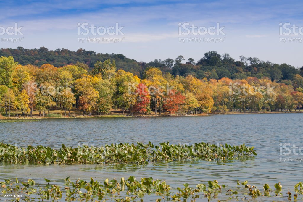 Landscape with Trees in Autumn Colors (Foliage), Water and Blue Sky at Rockland Lake State Park, Hudson Valley, New York. stock photo