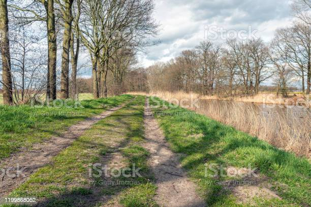 Photo of Landscape with two wheel tracks on the country road