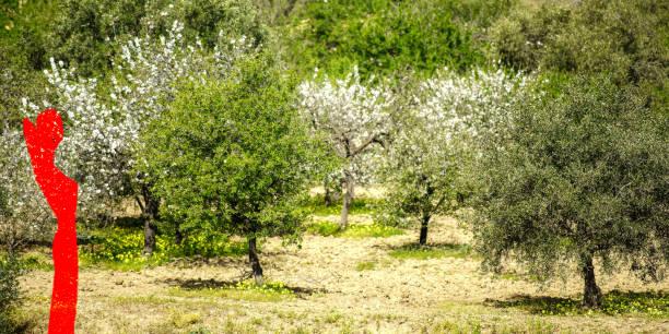 landschaft mit frau in rot - havadi-nagy stock-fotos und bilder