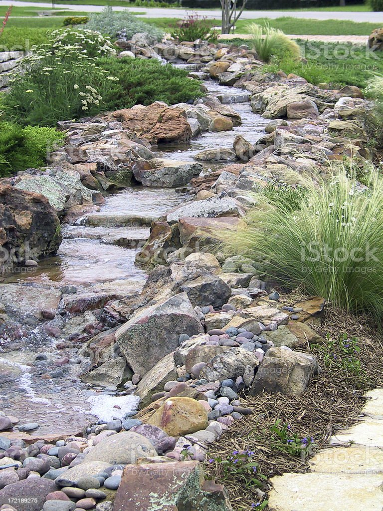 Landscape - Xeriscape royalty-free stock photo