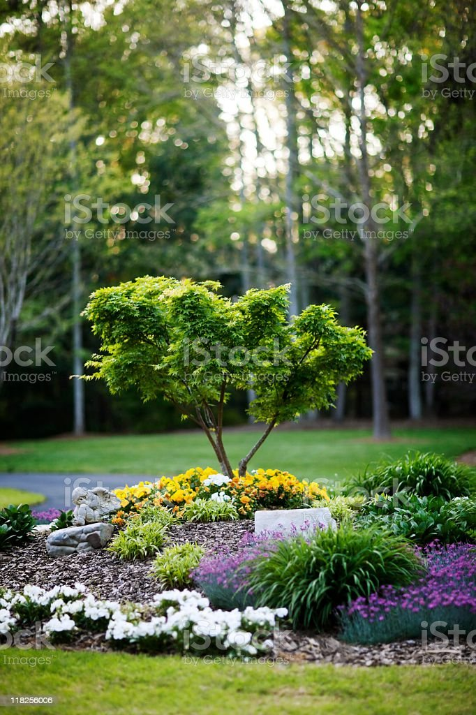 Landscape Yard royalty-free stock photo