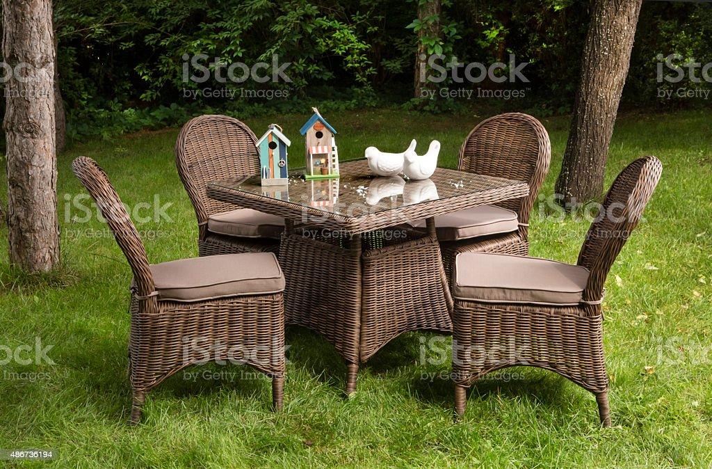 Paesaggistico cortile posteriore giardino con patio con mobili da