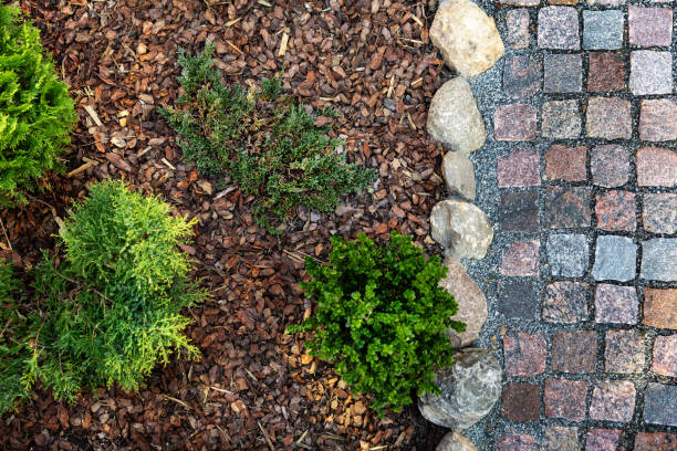 landscaped garden - mulched flower bed and granite cobblestone path. top view stock photo