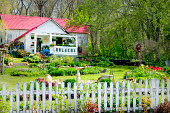 An old white picket fence stands in front of an adorable little cottage with beautifully landscaped gardens.