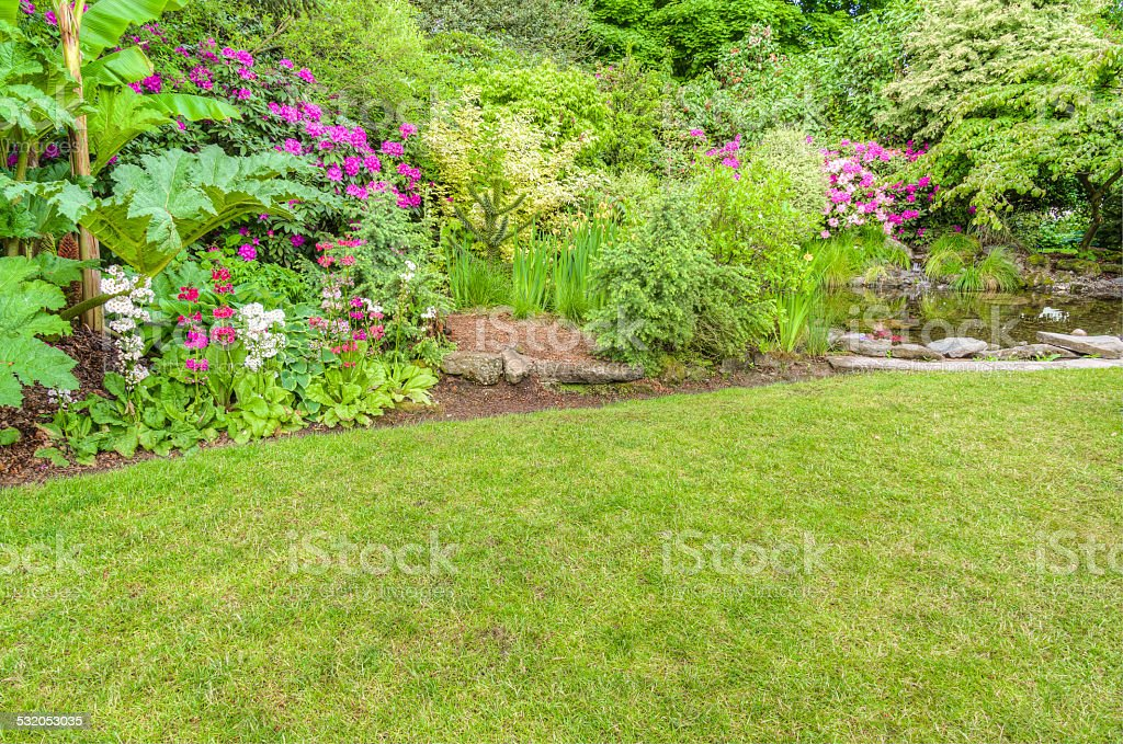 Landscaped garden scene with blooming shrubs stock photo