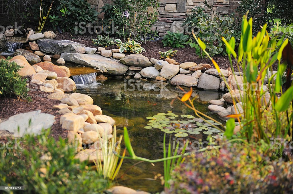 Landscaped Koi Pond royalty-free stock photo