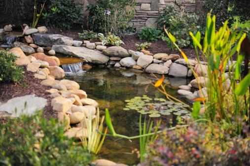 Landscaped Koi Pond