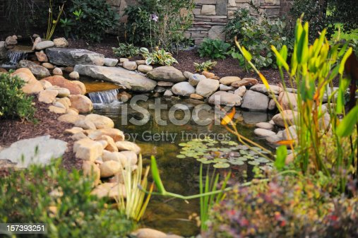 istock Landscaped Koi Pond 157393251