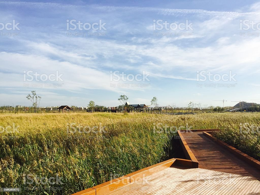 landscape-fall royalty-free stock photo