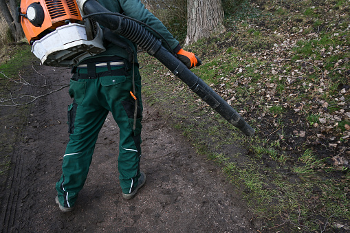 Landscaper in a park with a motorized machine on his back is blowing dry leaves away from the footpath, selected focus