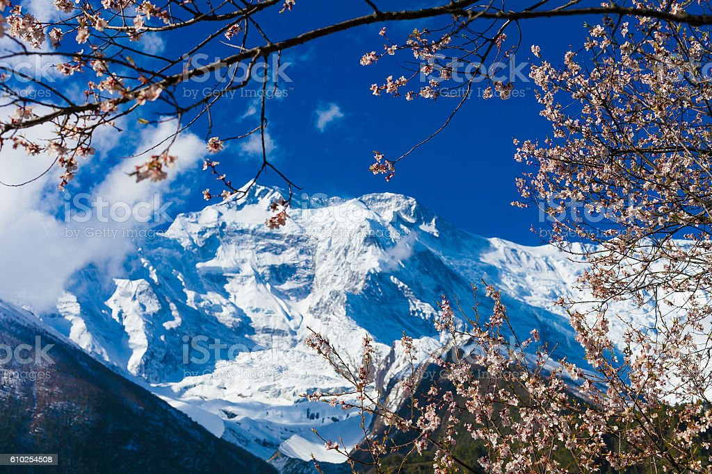 Landscapes Mountains Nature Morning Under Three Viewpoint.Mountain Trekking Landscape стоковое фото