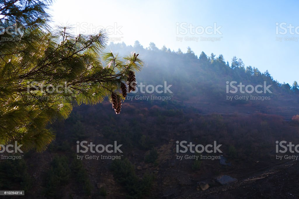 Landscapes Nepals Mountains Nature Morning Under Three Viewpoint.Mountain Trekking стоковое фото