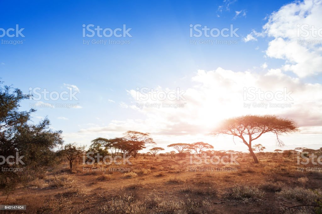 Landscapes of dry and arid African savannah stock photo