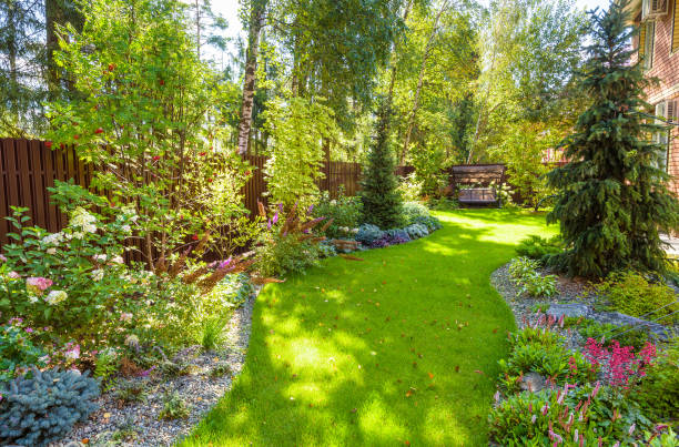 Landscaping in green home garden. Landscape design with plants and flowers at residential house. Scenic view of nice landscaped garden in backyard. Landscaping in green home garden. Landscape design with plants and flowers at residential house. Scenic view of nice landscaped garden in backyard. Scenery of natural landscaping place in summer. backyard stock pictures, royalty-free photos & images