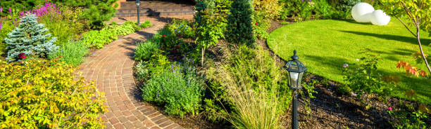 Landscaping in nice green garden in summer. Panoramic view of landscaped place at residential house. stock photo