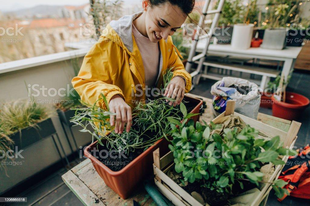 Landskapsarkitektur min balkong trädgård - Royaltyfri 20-29 år Bildbanksbilder