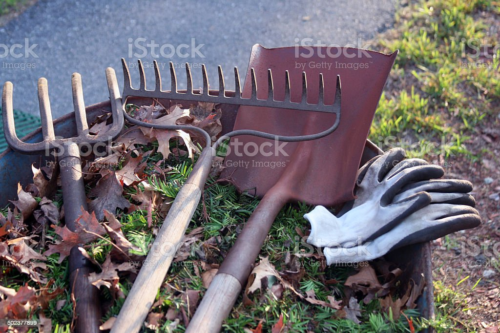 Landscaping tools with room for copy stock photo