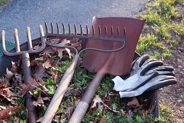 landscaping tools with room for copy - kruiwagen met gereedschap stockfoto's en -beelden