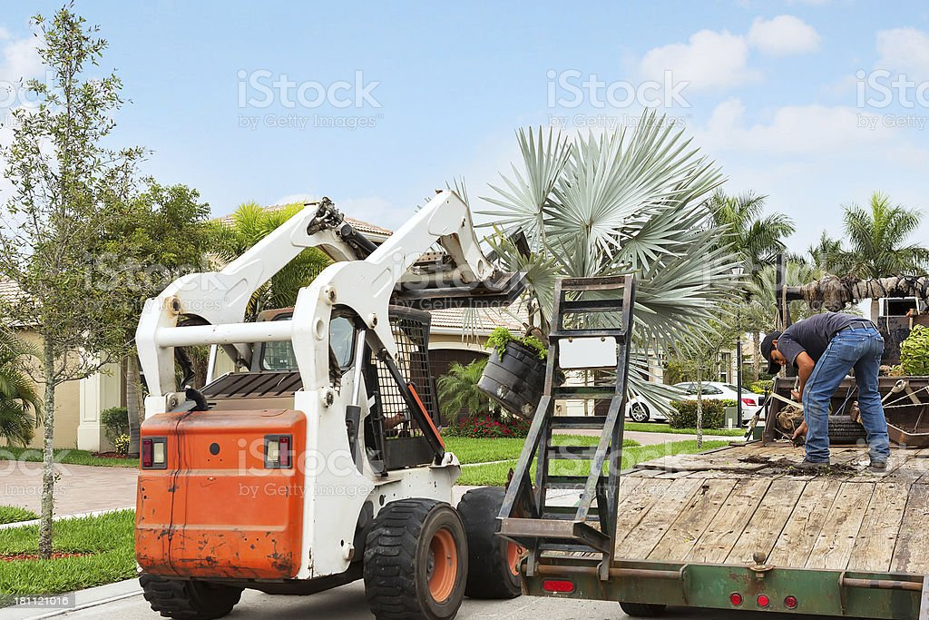Landscaping truck with tropical plants stock photo