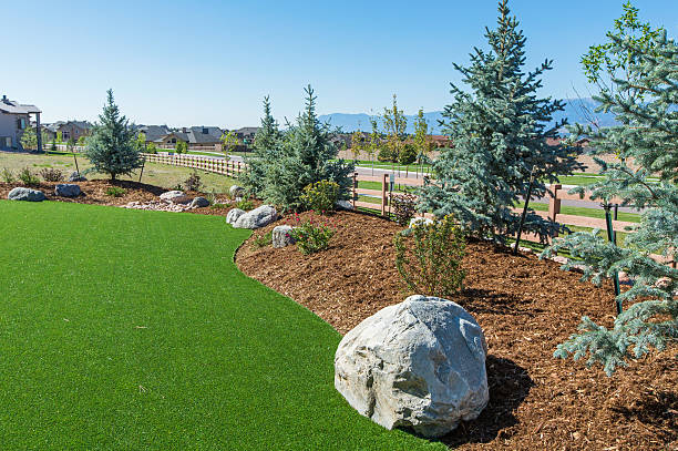 Landscaping with Artificial turf Beautiful backyard with the use of artificial turf imitation stock pictures, royalty-free photos & images