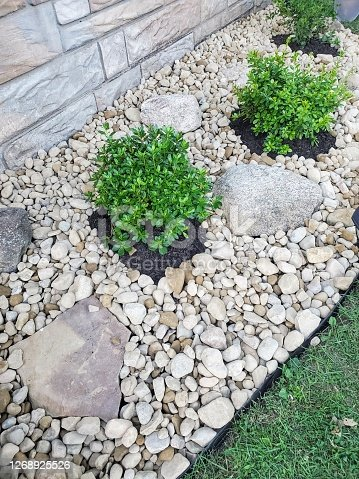Landscaping with river rocks and some mulch around newly planted bushes