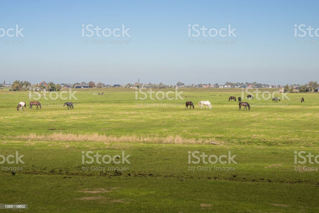 Landschaft in Holland stock photo