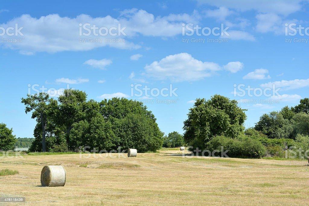Landschaft stock photo