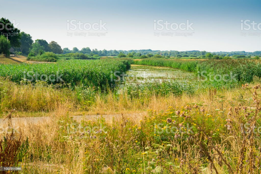 EHS van natuurpark Bossche Broek in Den Bosch is Hertogenbosch, Nederland foto