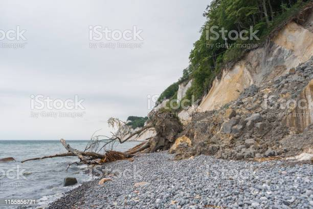 Photo of Landslide and fallen tree