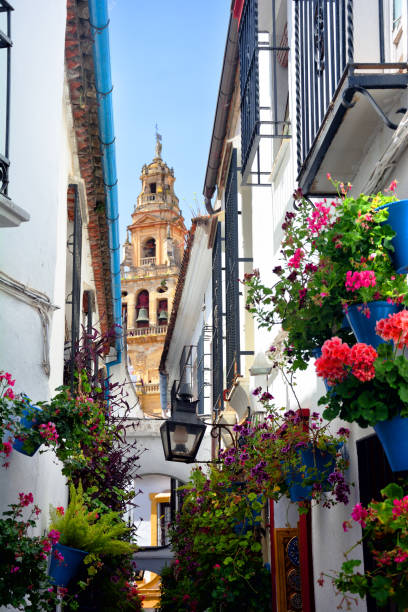 Lane of flowers, Cordoba Lane of flowers (Calleja de las Flores) with Great Mosque of Cordoba in the background cordoba spain stock pictures, royalty-free photos & images