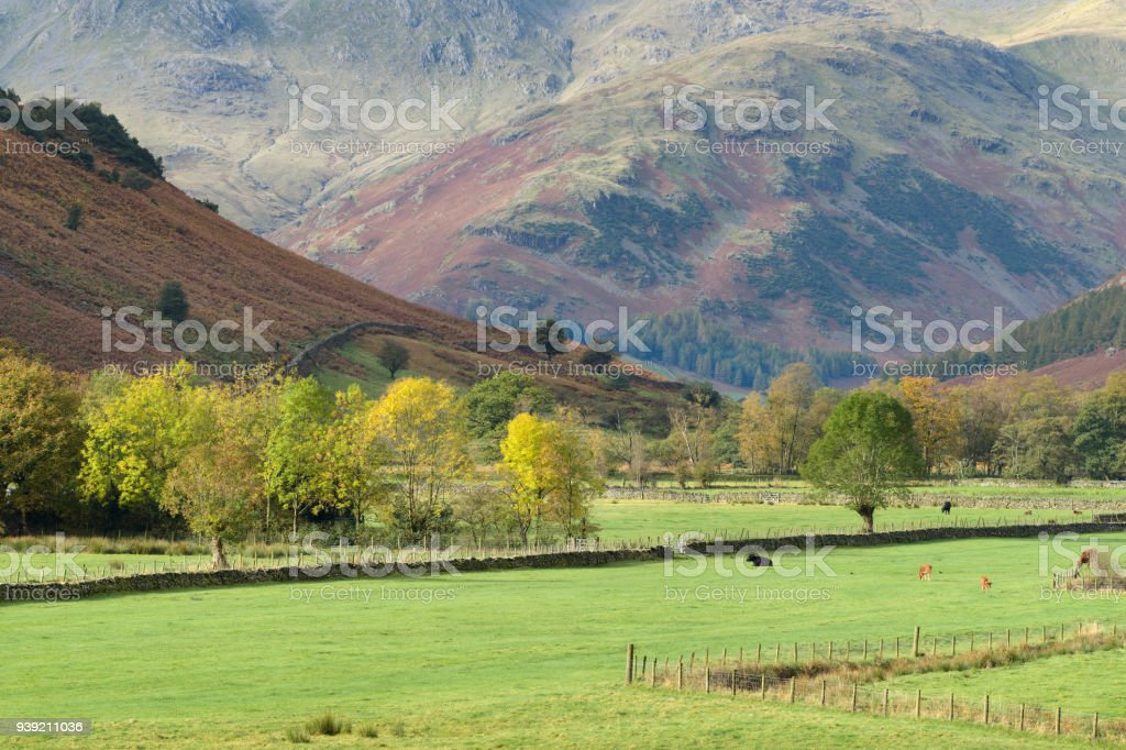Langdale valley in the Lake District, UK stock photo
