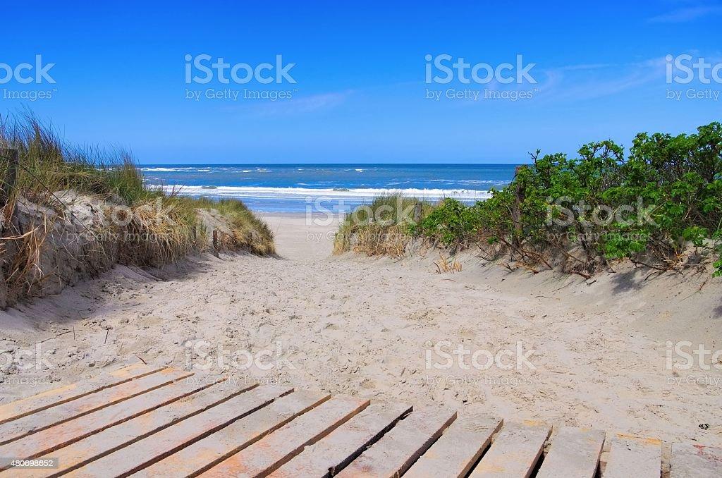 Langeoog dune and track stock photo
