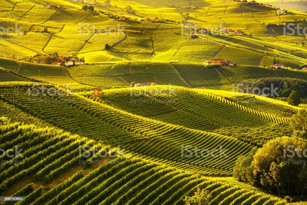 Langhe vineyards sunset panorama, Barolo, Piedmont, Italy Europe. - foto stock
