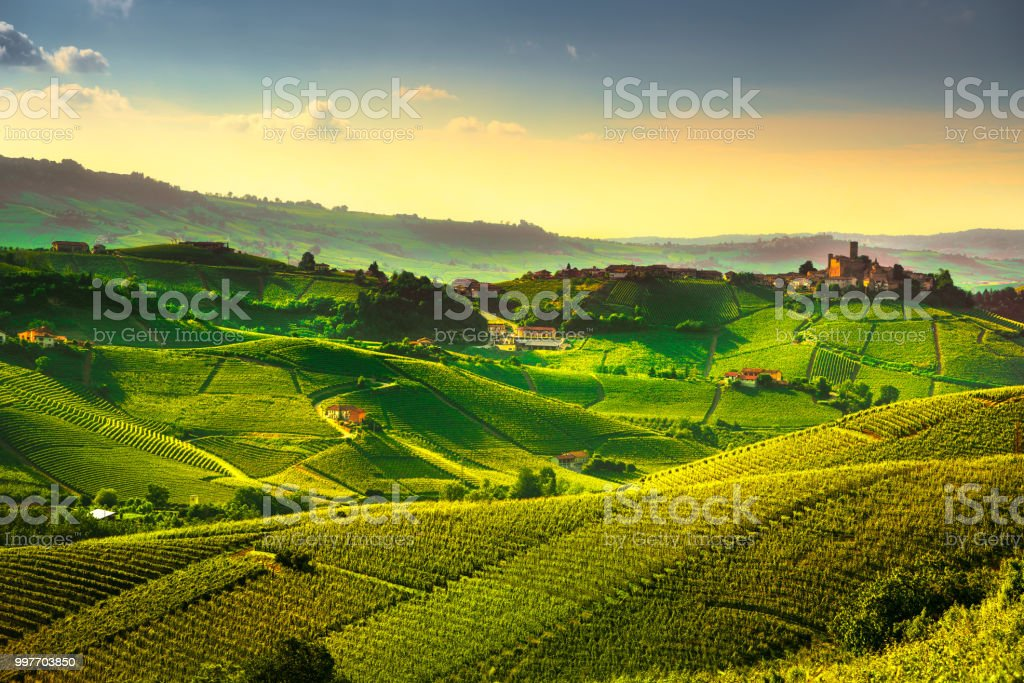 Langhe vineyards sunset panorama, Castiglione Falletto, Piedmont, Italy Europe. - foto stock