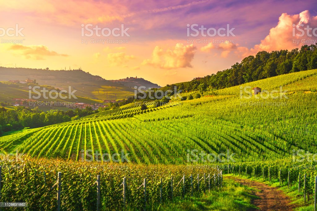 Langhe vineyards view, Barolo and La Morra, Piedmont, Italy Europe. - foto stock