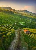 istock Langhe vineyards view, Barolo and La Morra, Piedmont, Italy Europe. 1295773578