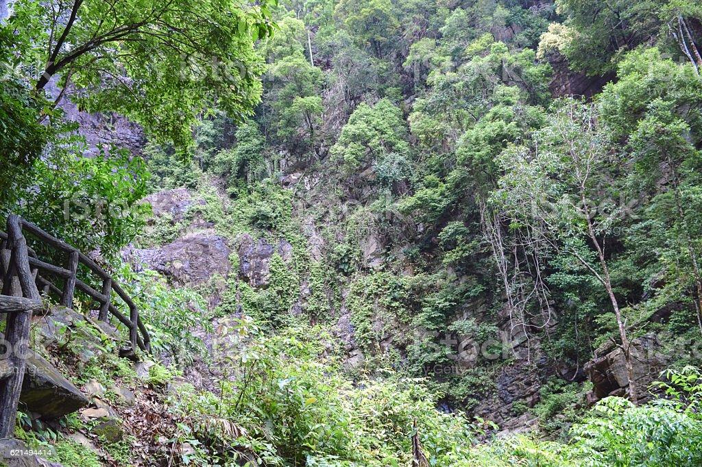 Langkawi island wild nature. Jungle and Temurun waterfall in Malaysia photo libre de droits