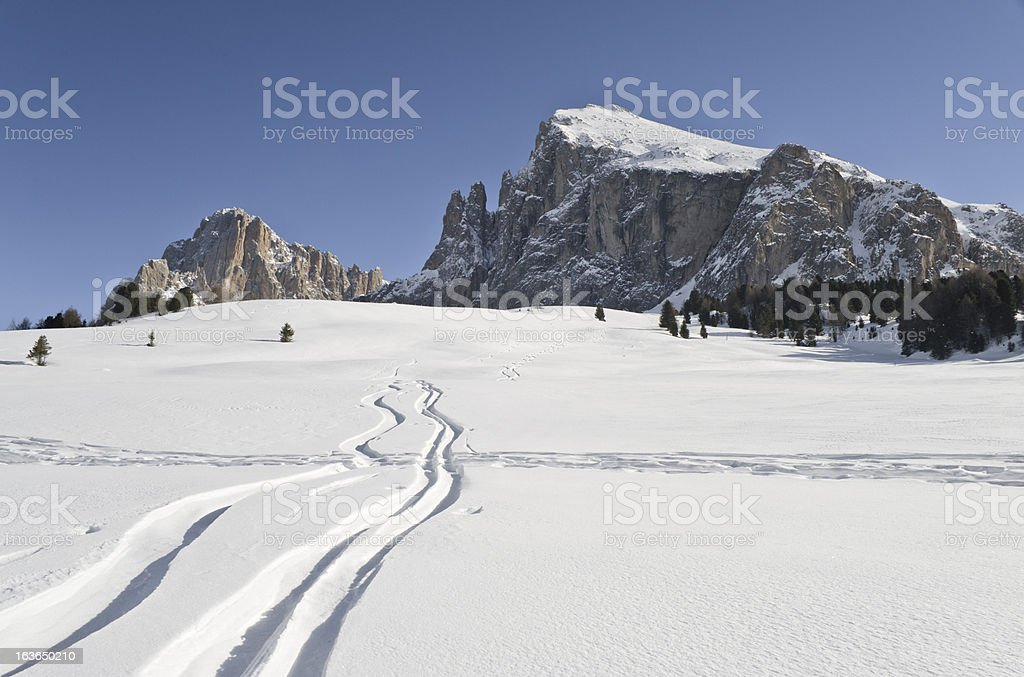Langkofel, Platkofel, Seiseralm and marks on the snow stock photo