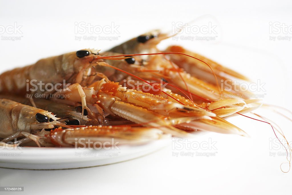 Langoustines or scampi on a plate royalty-free stock photo